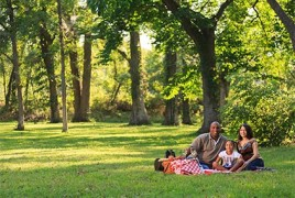 Family having a picnic on green grass