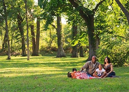 Group enjoys a picnic on a family reunion in Kansas
