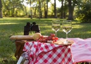 A picnic setting
