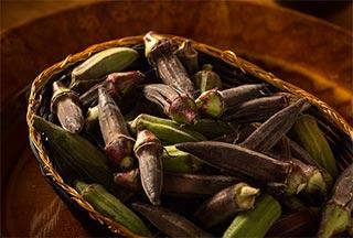 Fresh Ochra gathered in a basket