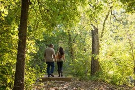 Couple walking through green trees