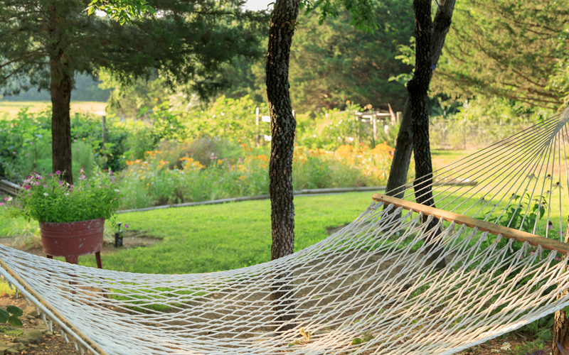 Relaxing Hammock in the Garden